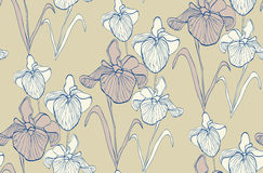 Flower seamless pattern with irises. Vector illustration Royalty Free Stock Photos