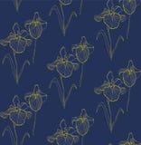 Flower seamless pattern with irises. Vector illustration Stock Photo