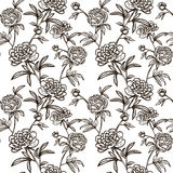 Flower seamless pattern with Peonies Stock Photography