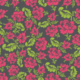 Flower seamless pattern. Rose ornament. Vector background. Royalty Free Stock Images