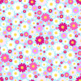Flower seamless pattern. Stock Photography