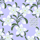 Flower seamless Pattern with white Flowers for design Stock Photo