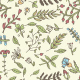 Flower seamless texture.  Endless floral pattern. Can be used for wallpaper Royalty Free Stock Photography