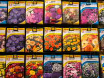 Flower Seed Packets on Sale Stock Photo