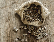 Flower seeds in bag Stock Photography