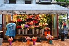 Flower seller on La Rambla. A flower seller on La Rambla in Barcelona tends to her stock stock photo