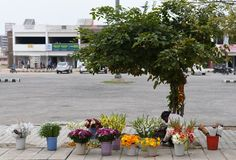 Flower seller in sector 1, Manesar, Gurgaon in India. Pretty flowers at his shop stock image