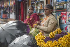 Flower seller tying flower in her streetside shop on rainy day in Ooty Stock Image