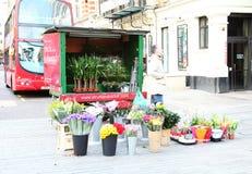 Flower selling kiosk scene. royalty free stock photography