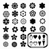 Flower_set和元素 库存图片