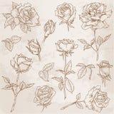 Flower Set Royalty Free Stock Photo