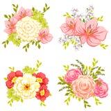 Flower set Royalty Free Stock Photos