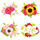 Flower set Stock Photography