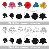 Flower set. Find correct shadow. Royalty Free Stock Photo