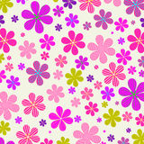 Flower Stock Images