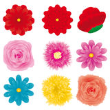 Flower set, part 3 Royalty Free Stock Photo