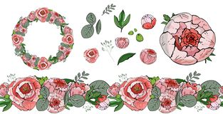 Flower set. seamless horizontal pattern. circular wreath. Peonies flowers isolated on white background. Floral elements royalty free illustration
