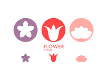 Flower. Set Royalty Free Stock Photography