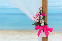Flower setting. On the beach Royalty Free Stock Images