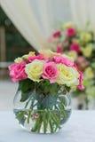 Flower setting Stock Image