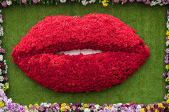 Flower shaped mouth Stock Photo
