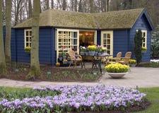 Flower shop. Dutch flower shop stock images