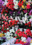 At Flower Shop. Closeup image of flowers at the flower shop Stock Photography