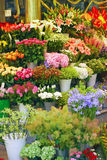 Flower shop Stock Image