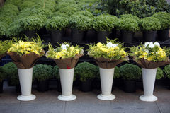 Flower shop. Outdoor fresh flowers in front of a flower store Royalty Free Stock Photo