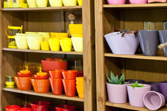 In flower shop Royalty Free Stock Image