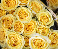 Flower shop. Closeup picture of flowers (roses) in a shop in paris stock image