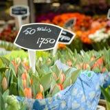 Flower shop in Bloemenmarkt, Amsterdam Netherlands. March 2015. Squared format stock photos