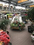 Flower shop. Bright flowers and green plants stand packed in pots on shelves and trays in the store. MINSK, MINSKAYA, 28 July 2017 Flower shop. Bright flowers Royalty Free Stock Photography