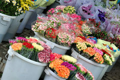 Flower shop business. Various flower selling at flower shop, shown as colorful fresh flower, or good business in flower shop Royalty Free Stock Photos