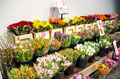 Flower shop. Colorful flowers in a flower shop stock photo