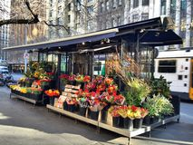 The flower shop Stock Photography