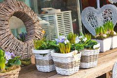 Flower shop in Gorinchem. Stock Image