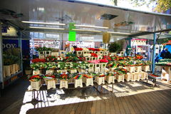 Flower shop  in Grote Markt Royalty Free Stock Image