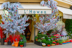Flower shop Hovea, Paris Stock Photo