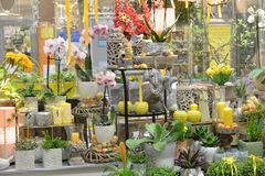 Flower shop. Interior of Flower shop, spring decorations Royalty Free Stock Photography