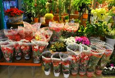 Flower shop in Italy  Royalty Free Stock Photography