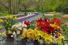 Flower shop in Keukenhof garden Stock Photos