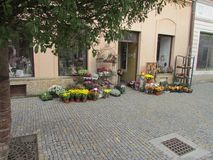 Flower shop in Kutna Hora, Czech Republic, outdoor flower trade. Bouquets, in pots, seedlings, stands, other accessories. Vases, decorative vegetables royalty free stock images
