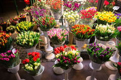 Flower shop at night Royalty Free Stock Photography