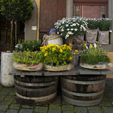 Flower shop on the old town street (Switzerland). Stock Photos