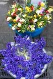 Flower shop. Street flower market color nature Stock Images
