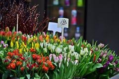 Flower shop Stock Image