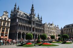 Flower show at the Grand Place in Brussels Stock Images