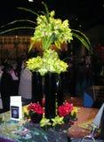 Flower show. The Philadelphia Flower Show 2010 Royalty Free Stock Photography