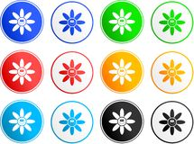 Flower sign icons Royalty Free Stock Images